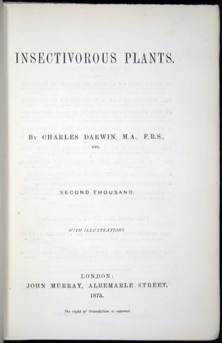 Image of Darwin-F1218-1875-00000-tp2