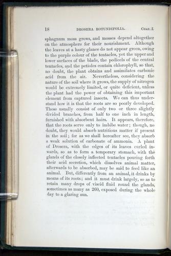 Image of Darwin-F1218-1875-00018