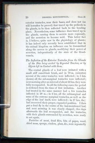Image of Darwin-F1218-1875-00020