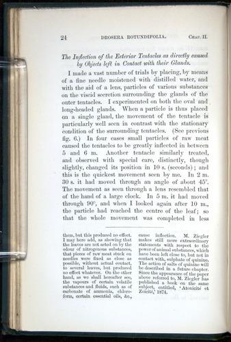 Image of Darwin-F1218-1875-00024