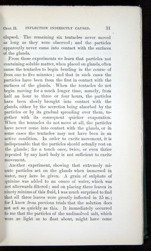 Image of Darwin-F1218-1875-00031
