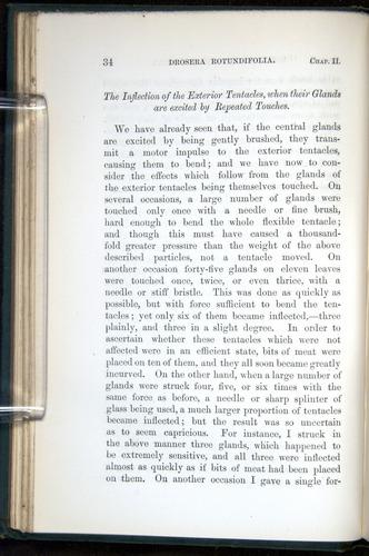Image of Darwin-F1218-1875-00034
