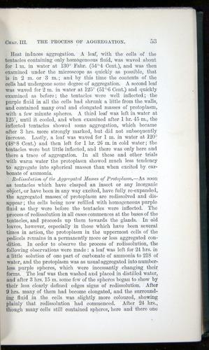 Image of Darwin-F1218-1875-00053