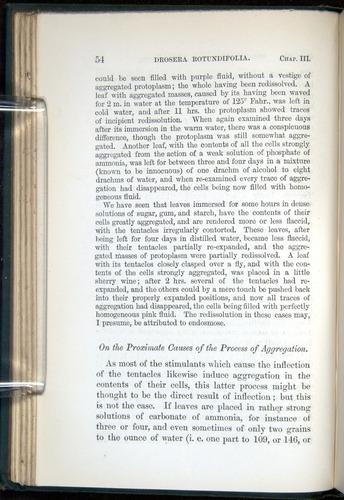 Image of Darwin-F1218-1875-00054