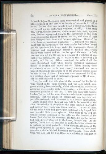 Image of Darwin-F1218-1875-00064