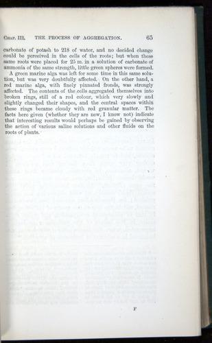 Image of Darwin-F1218-1875-00065