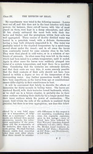 Image of Darwin-F1218-1875-00067