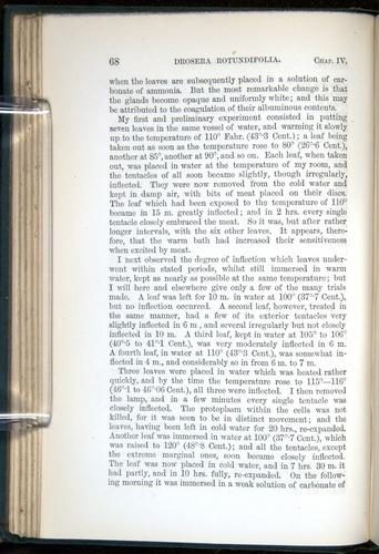 Image of Darwin-F1218-1875-00068