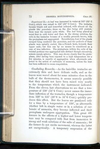 Image of Darwin-F1218-1875-00072