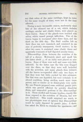 Image of Darwin-F1218-1875-00104