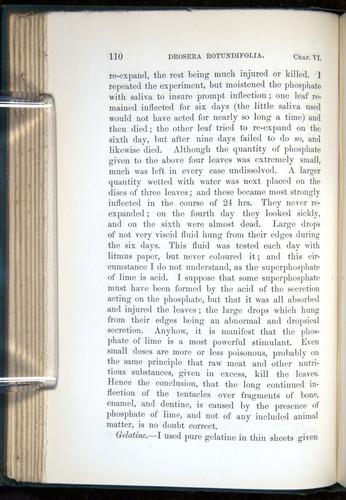 Image of Darwin-F1218-1875-00110