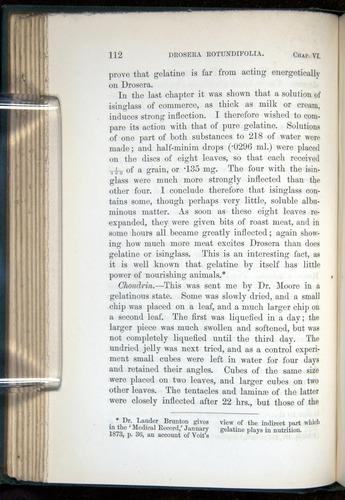 Image of Darwin-F1218-1875-00112