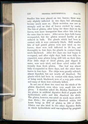 Image of Darwin-F1218-1875-00118
