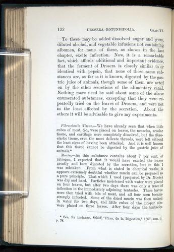Image of Darwin-F1218-1875-00122