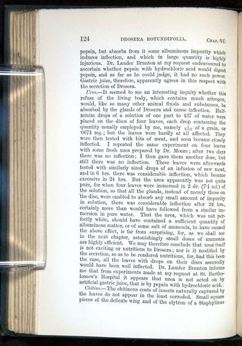 Image of Darwin-F1218-1875-00124