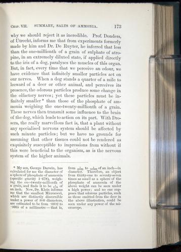 Image of Darwin-F1218-1875-00173