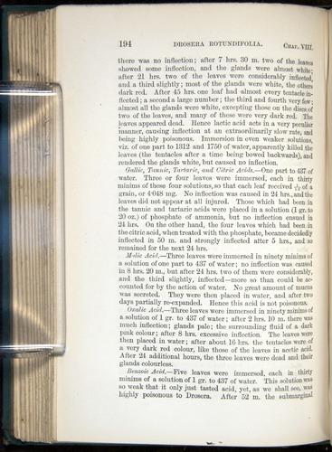 Image of Darwin-F1218-1875-00194