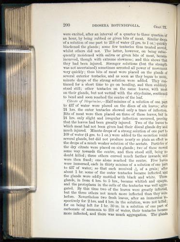 Image of Darwin-F1218-1875-00200