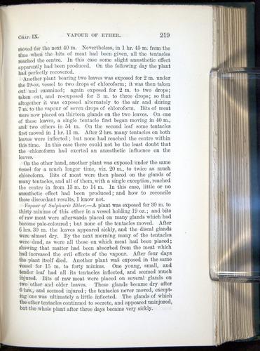 Image of Darwin-F1218-1875-00219