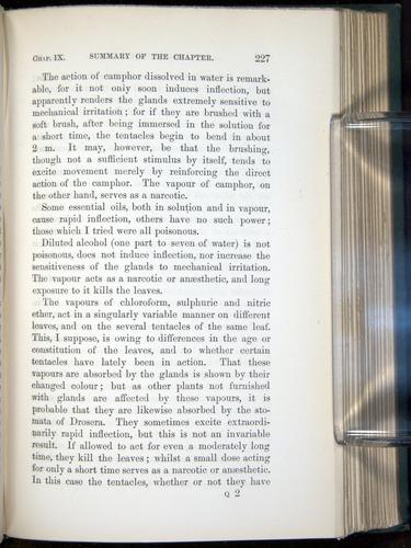 Image of Darwin-F1218-1875-00227