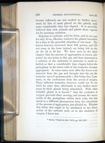 Image of Darwin-F1218-1875-00228