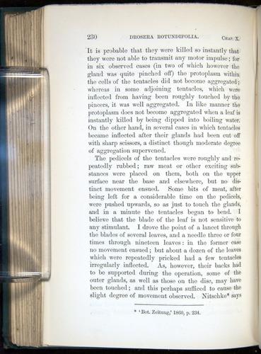 Image of Darwin-F1218-1875-00230