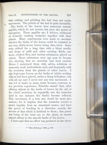 Image of Darwin-F1218-1875-00231