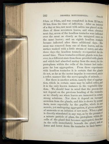 Image of Darwin-F1218-1875-00242