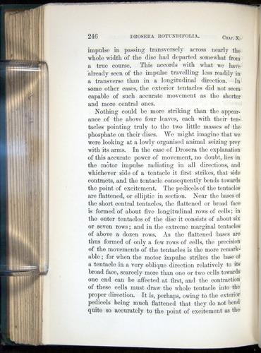 Image of Darwin-F1218-1875-00246