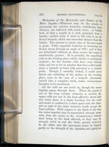 Image of Darwin-F1218-1875-00254