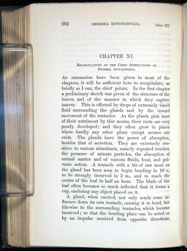 Image of Darwin-F1218-1875-00262