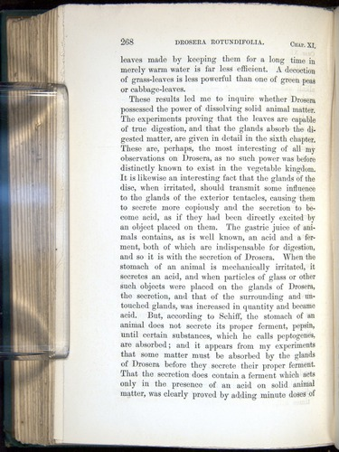 Image of Darwin-F1218-1875-00268