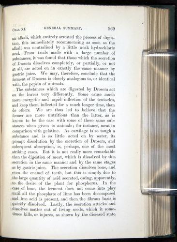 Image of Darwin-F1218-1875-00269