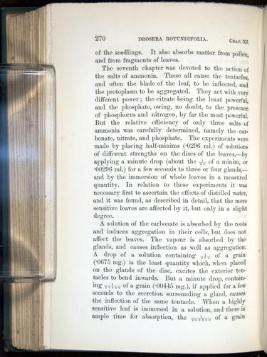 Image of Darwin-F1218-1875-00270