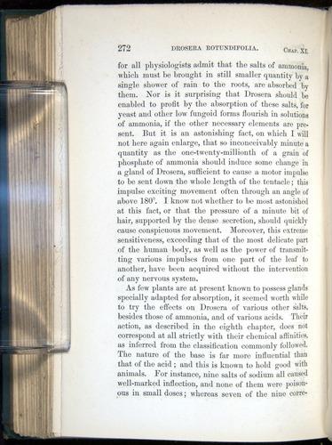 Image of Darwin-F1218-1875-00272