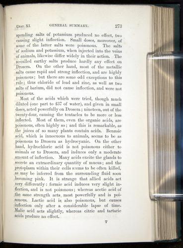 Image of Darwin-F1218-1875-00273