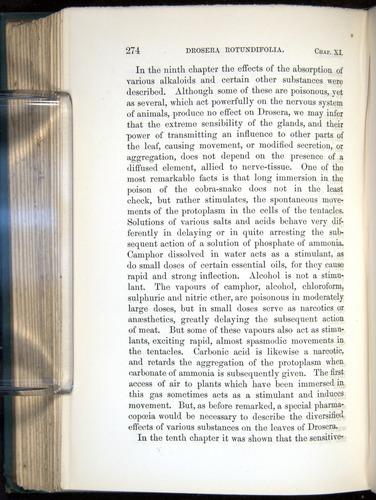 Image of Darwin-F1218-1875-00274