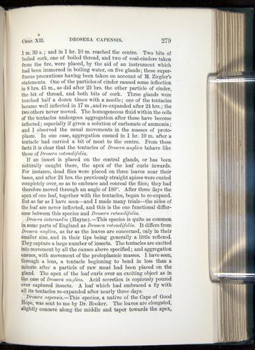 Image of Darwin-F1218-1875-00279