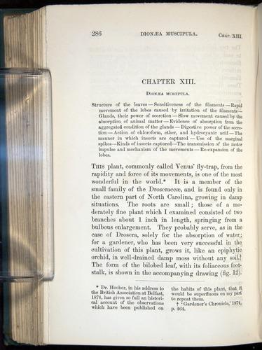 Image of Darwin-F1218-1875-00286