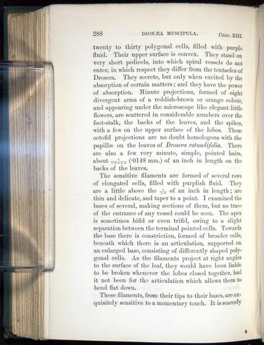 Image of Darwin-F1218-1875-00288
