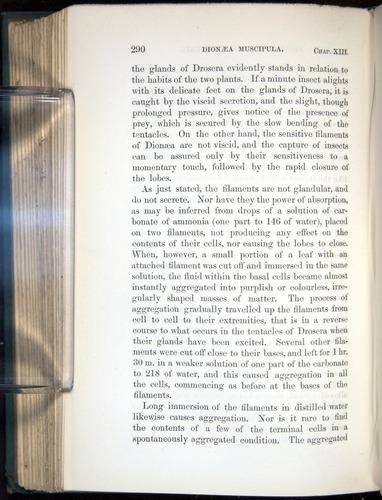 Image of Darwin-F1218-1875-00290