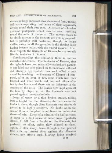 Image of Darwin-F1218-1875-00291