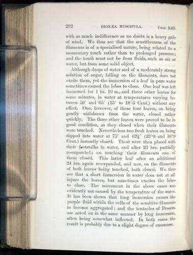 Image of Darwin-F1218-1875-00292