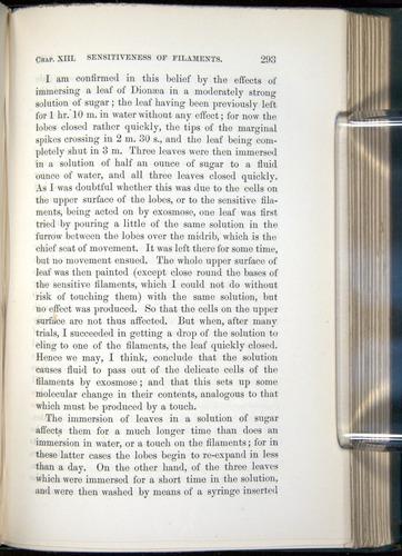 Image of Darwin-F1218-1875-00293