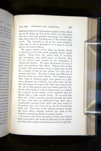 Image of Darwin-F1218-1875-00295
