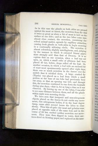 Image of Darwin-F1218-1875-00296