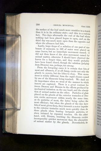 Image of Darwin-F1218-1875-00298