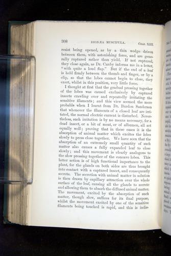 Image of Darwin-F1218-1875-00308