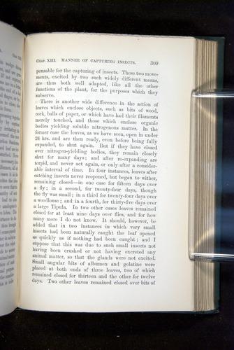 Image of Darwin-F1218-1875-00309