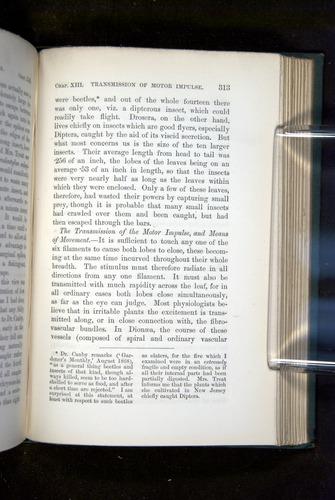 Image of Darwin-F1218-1875-00313